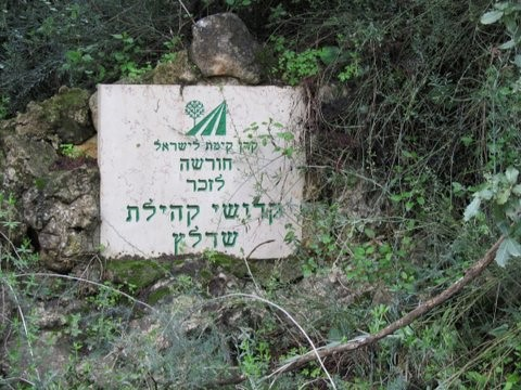 יער ירושלים